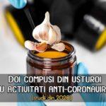 Doi compusi din usturoi au activitati anti-coronavirus