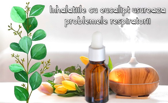 Inhalatiile cu eucalipt usureaza problemele respiratorii
