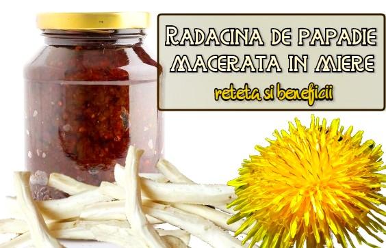 Radacina de papadie macerata in miere – reteta si beneficii
