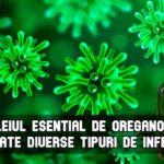 Uleiul esential de oregano combate diverse tipuri de infectii