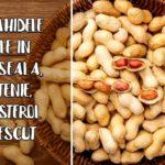 Arahidele – utile in oboseala, astenie, colesterol crescut
