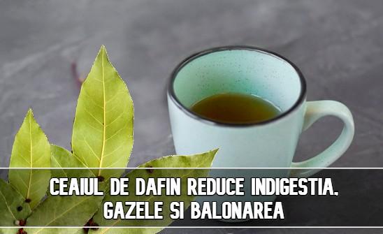 Ceaiul de dafin reduce indigestia, gazele si balonarea