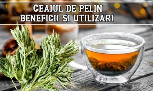 Ceaiul de pelin – beneficii si utilizari