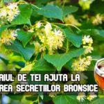 Ceaiul de tei ajuta la eliminarea secretiilor bronsice