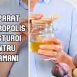 Preparat din propolis si usturoi pentru plamani
