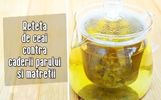Reteta de ceai contra caderii parului si matretii