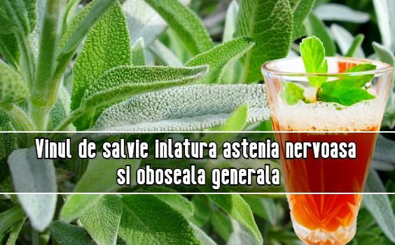 Vinul de salvie inlatura astenia nervoasa si oboseala generala