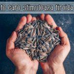 Alimente care stimuleaza tiroida lenesa