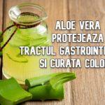 Aloe vera protejează tractul digestiv și curata colonul