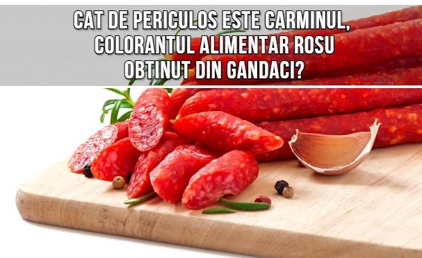 Cat de periculos este carminul (E120), colorantul alimentar obtinut din gandaci?