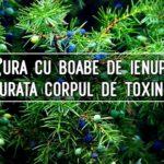 Cura cu boabe de ienupar curata corpul de toxine