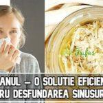 Hreanul – o solutie eficienta pentru desfundarea sinusurilor