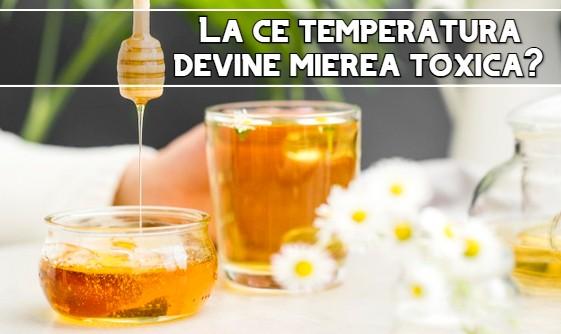 La ce temperatura devine mierea toxica?