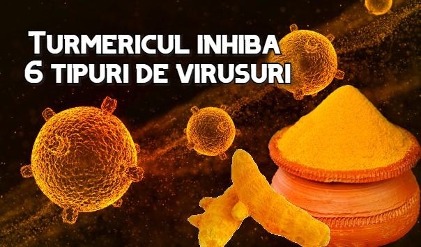 Turmericul inhibă 6 tipuri de virusuri