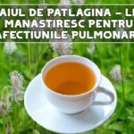 Ceaiul de patlagina - leac manastiresc pentru afectiunile pulmonare