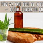 Cum sa faci ulei de aloe vera – uleiul tineretii pielii