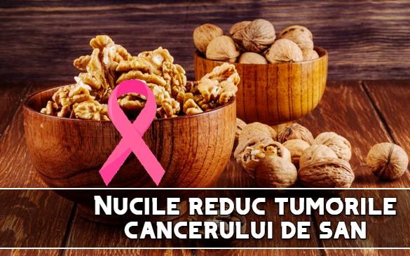 Nucile reduc tumorile cancerului de san