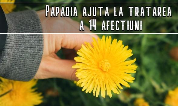 Papadia ajuta la tratarea a 14 afectiuni