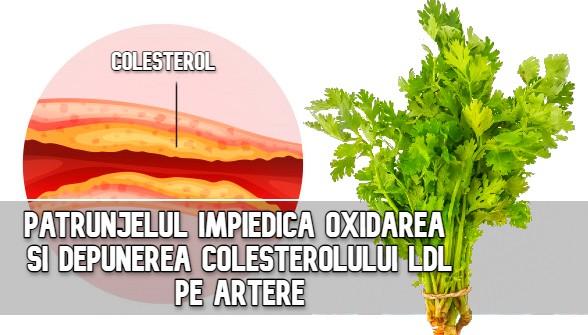 Patrunjelul impiedica oxidarea si depunerea colesterolului pe artere