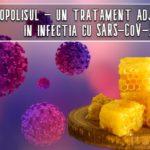 Propolisul poate fi un tratament adjuvant in infectia cu SARS-CoV-2