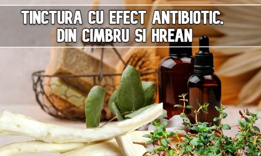 Tinctura cu efect antibiotic, din cimbru si hrean