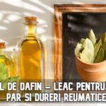 Uleiul de dafin - leac pentru piele, par si dureri