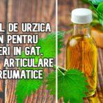 Uleiul de urzica – bun pentru dureri in gat, dureri articulare si reumatice
