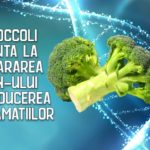 Broccoli ajuta la repararea ADN-ului si reducerea inflamatiilor