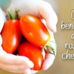 Ce beneficii au rosiile cherry