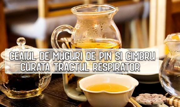 Ceaiul de muguri de pin si cimbru curata tractul respirator