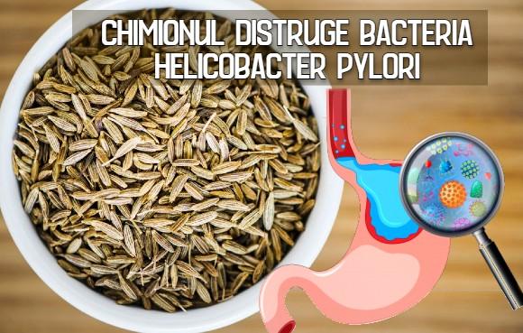 Chimionul distruge bacteria Helicobacter pylori