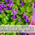 Cum sa faci sirop de violete