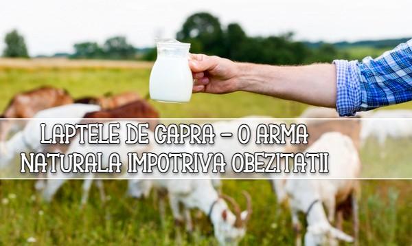 Laptele de capra – o arma naturala impotriva obezitatii