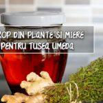 Sirop din plante pentru tusea umeda/productiva