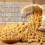 Soia ajuta la scaderea tensiunii arteriale si a colesterolului