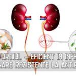 Usturoiul - eficient in infectiile urinare rezistente la antibiotice
