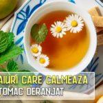 8 ceaiuri care calmeaza un stomac deranjat