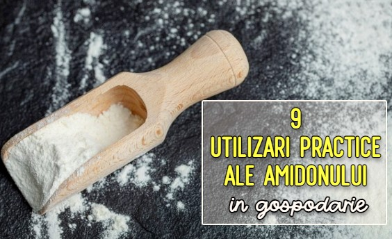 9 utilizari practice ale amidonului in gospodarie