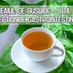 Ceaiul de busuioc - util in afectiuni gastrointestinale