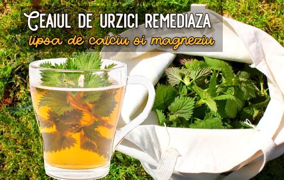 Ceaiul de urzici curata sangele si remediază lipsa de calciu si magneziu