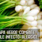 Ceapa verde ajuta in bolile infecto-alergice