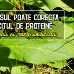 Macrisul poate corecta deficitul de proteine