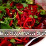 Salata de sfecla, morcov si spanac