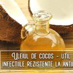Uleiul de cocos util in infectiile rezistente la antibiotice