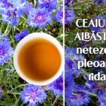 Ceaiul de albăstrele netezește pleoapele ridate
