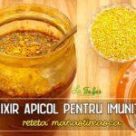 Elixir apicol pentru imunitate – reteta manastireasca