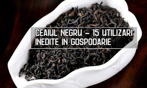 15 utilizari inedite ale ceaiului negru in gospodarie