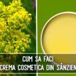 Crema cosmetica din sanziene
