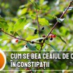 Cum se bea ceaiul de crusin in constipatii