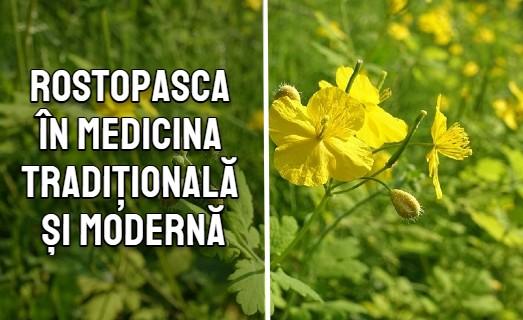 Rostopasca în medicina tradițională și modernă